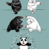 Como surgiu o Urso Panda!