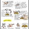 Filosofia de um pardal!