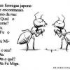 Formiga Japonesa