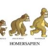 Homersapien