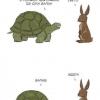 Tartaruga levando vantagem com a lebre!!