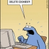 Deletando os cookies!