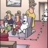Vida de cachorro!