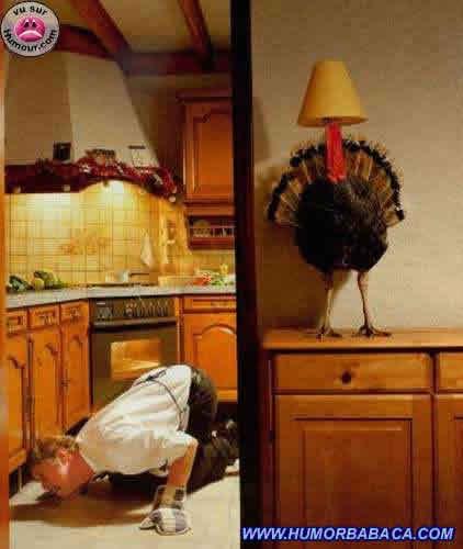 Se escondendo do fogão