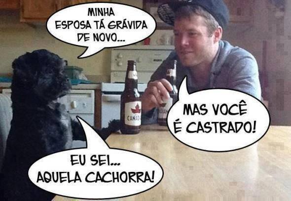 Cachorrinho Corno