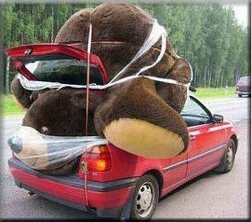 Alguem vai ganhar um ursinho