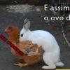 E assim nasce o ovo de páscoa...