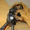 Franco atirador