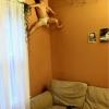 A infância do homem aranha...