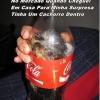 Coca cola agora vem com brinde!