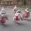 Ajudantes de Papai Noel...