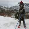 Vamos esquiar?