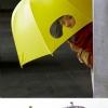 Invenção criativa...