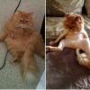O antes e o depois...