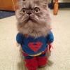 Olha o Superman!
