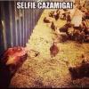 Até os Animais na onda do Selfie