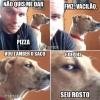 Cachorro Vingativo