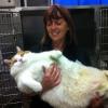 Gato Gigante!!