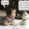 Um gato conselheiro