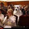 O urso pegando um cineminha...