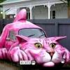 Carro Miau!