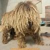 Cachorro ou pano de chão?