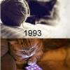 Os animais também evoluiram!