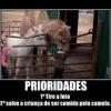 O que é prioridade?