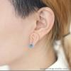 Brinco de orelha