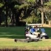 Que tal uma partida de golfe?