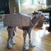 Super cão - Futurista