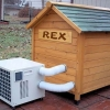Casa do Rex