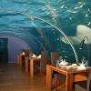 Um restaurante debaixo dágua!