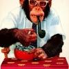 Macaco viciado!