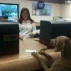 O cachorro vai ao banco...
