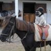 Um jockey com estilo!