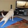 Praticando exercício!