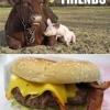 Amigos pra sempre!