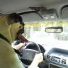 Cão no volante...