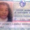 Prazer, eu sou o Disney Landia