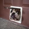 Abre pra mim?
