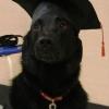 O mais novo graduado!