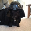 Darth Cão