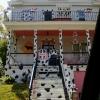 A casa dos dálmatas!