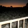 O amanhecer na fazenda...