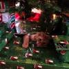 Muito grato ao Papai Noel...