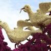 Esculturas de flores na Holanda IV