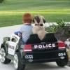 Corra que a polícia vem ai!