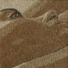 Arte da ucraniana Svetlana Ivanchenko com areia e conchas III