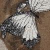 Arte da ucraniana Svetlana Ivanchenko com areia e conchas VIII